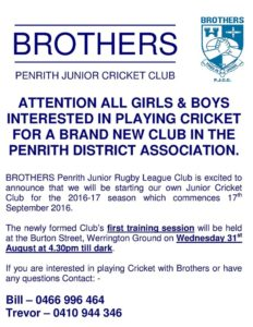 CRICKET FLYER