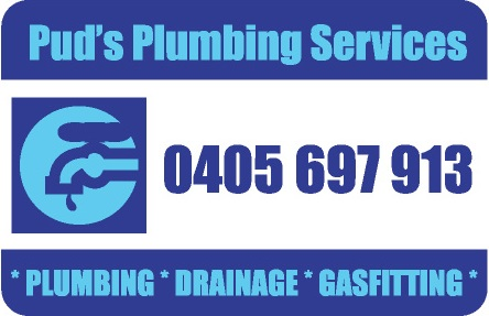 PUDS PLUMBING SERVICES